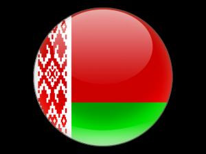 273213614_w640_h640_plug_proizvodstva_belorus
